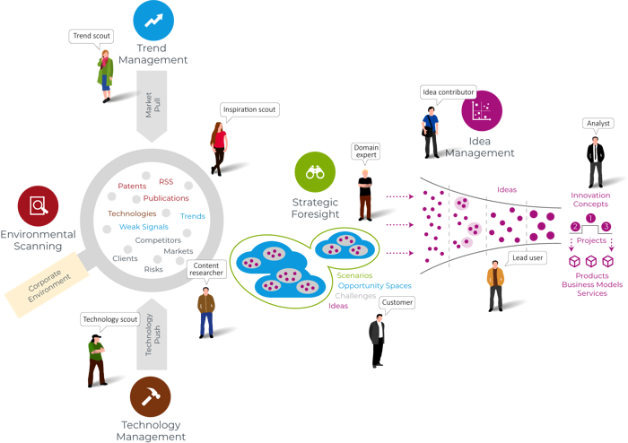 Trend Management Process