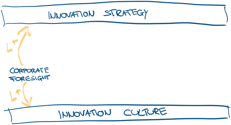 Corporate Foresight Innovation Strategy and Innovation Culture Process