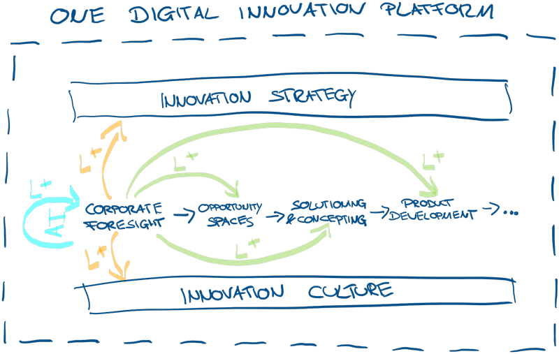 Innovation Process supported by an Innovation Platform1