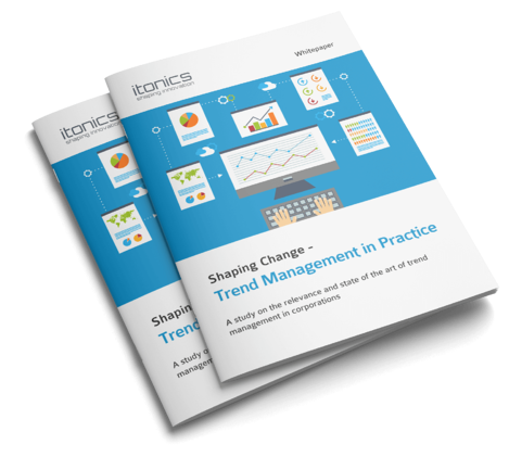 White Paper Trend Management in Practice Download