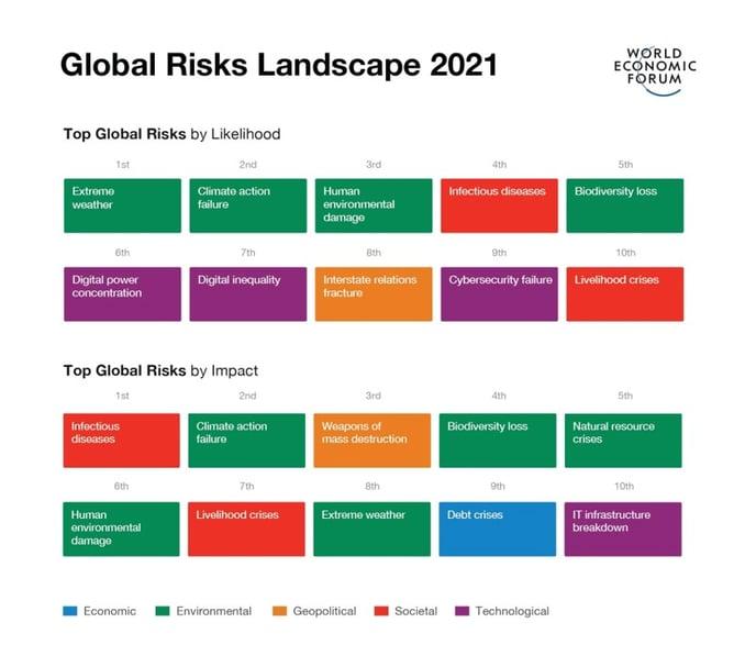 World Economic Forum Global Risks Report, 2021